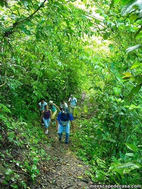 Caminata a las cascadas del Shilcayo, Perú (Checa, Gina, Maju, Paquita, Dante y Abel)