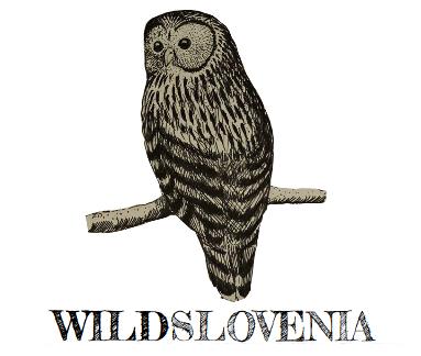 WildSlovenia