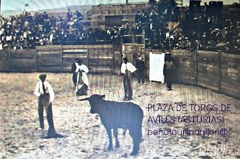PLAZA DE TOROS DE AVILES ASTURIAS