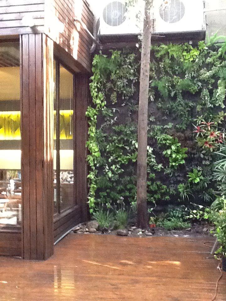 Jardines especiales jardines especiales for Biopiscinas construccion