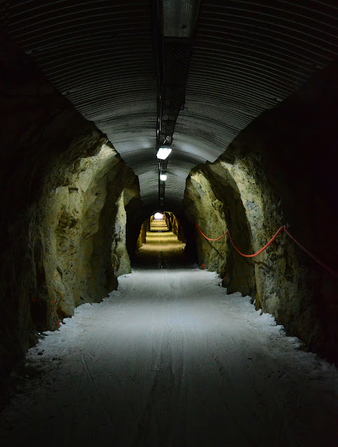 blog90_tunnel1.jpg