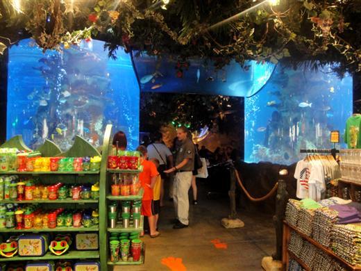 Rainforest Cafe Myrtle Beach