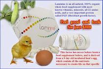 Laminine, are la baza extract din ou fecundat si incubat