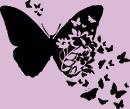 """""""Полет бабочки""""...Избавляемся от долгостроев легко!"""