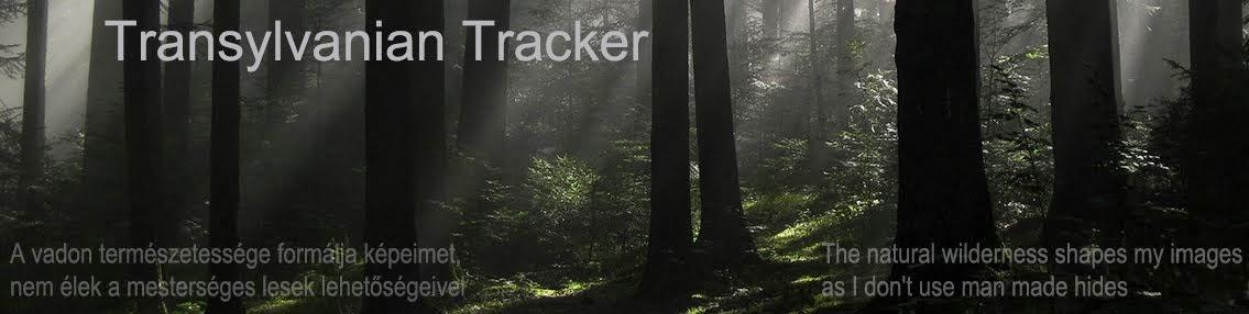 Transylvanian Tracker