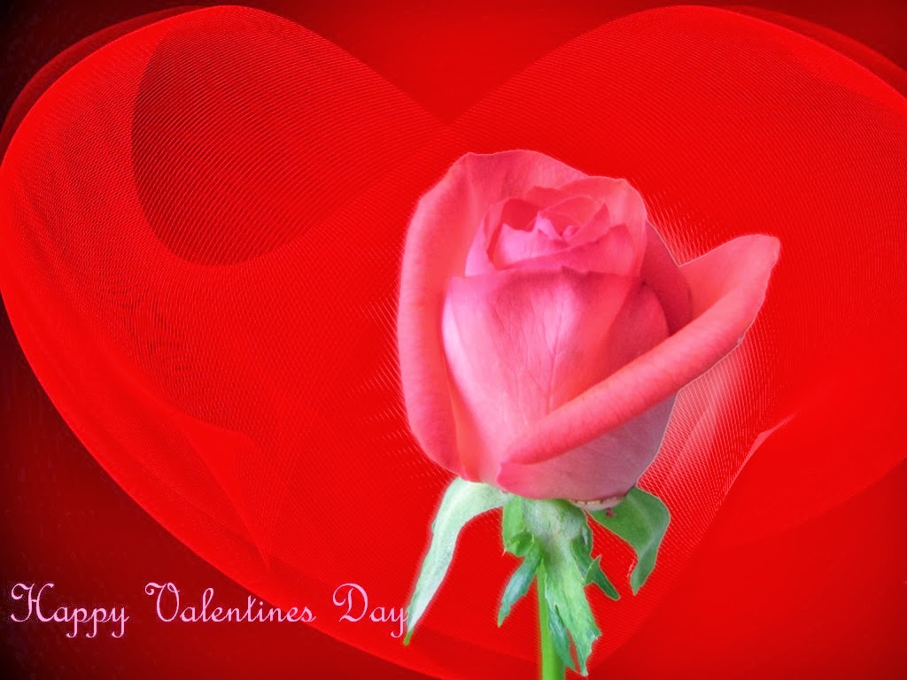 Valentines Day Wallpapers Download for Free