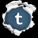 follow my tumblr!