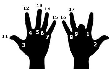 Загнуто 9 пальцев