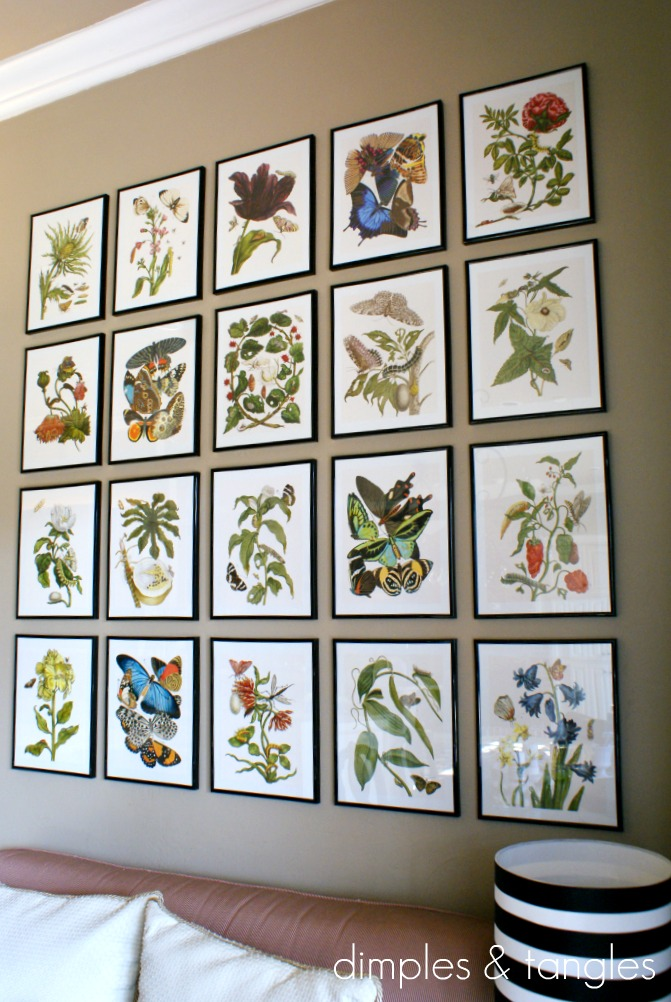 Botanical Gallery Wall - Dimples and Tangles