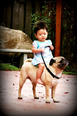 Funny photo of girl child and pet dog