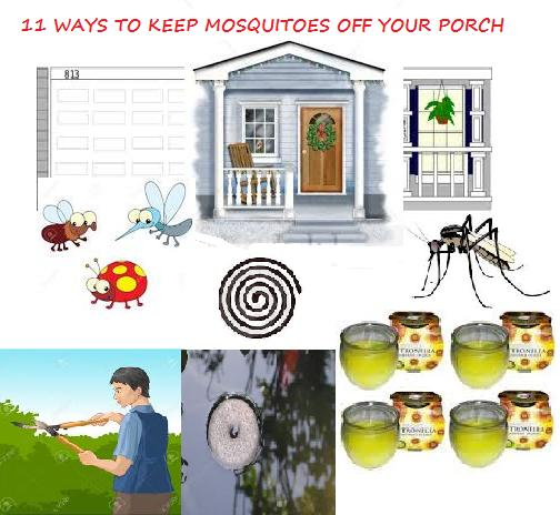 How to get rid of mosquitoes 11 ways to keep mosquitoes Ways to get rid of mosquitoes in your house