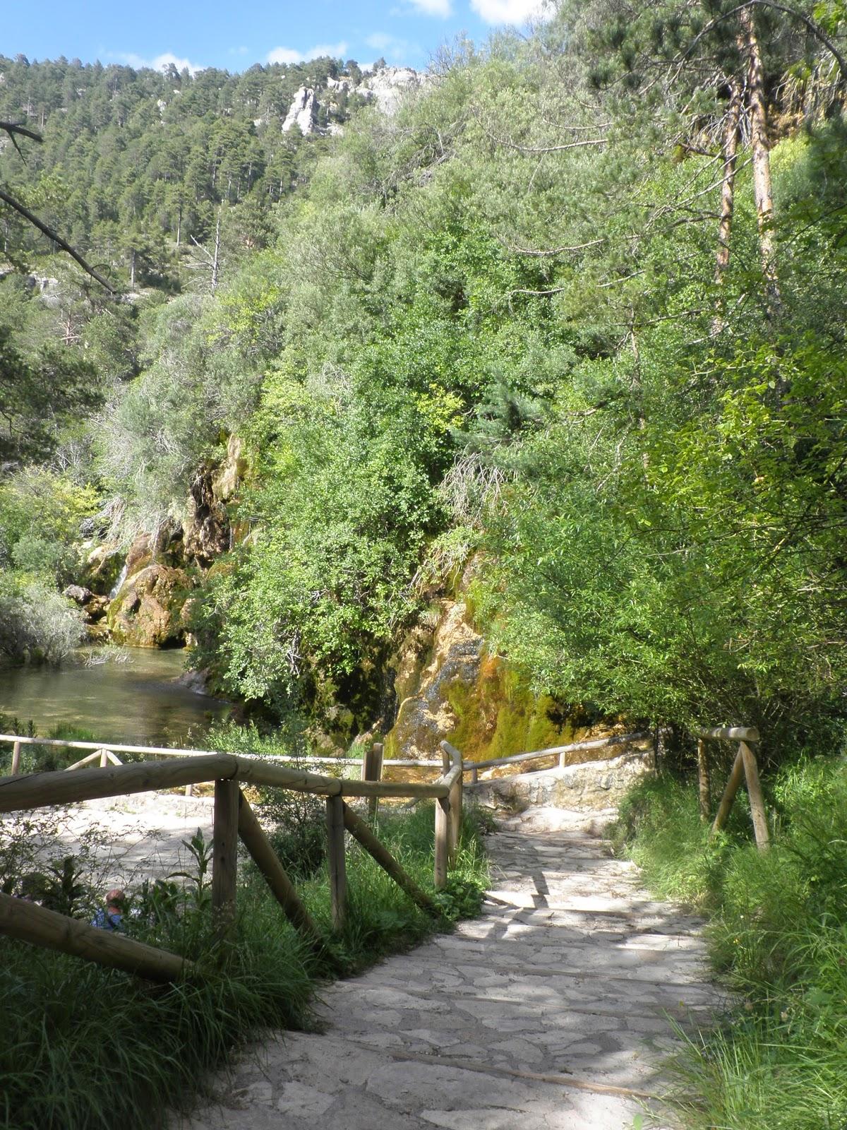 Senderos del Nacimiento del río Cuervo.