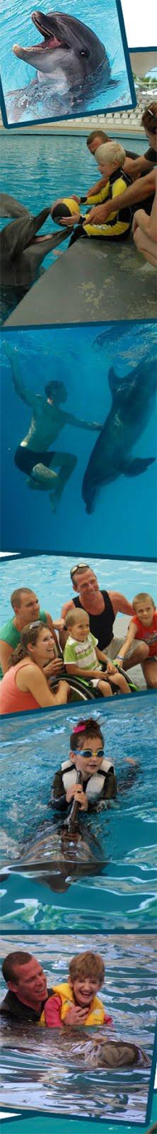 Z delfinoterapie