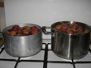 victoria plums.halved stoned and simmering on the stove top