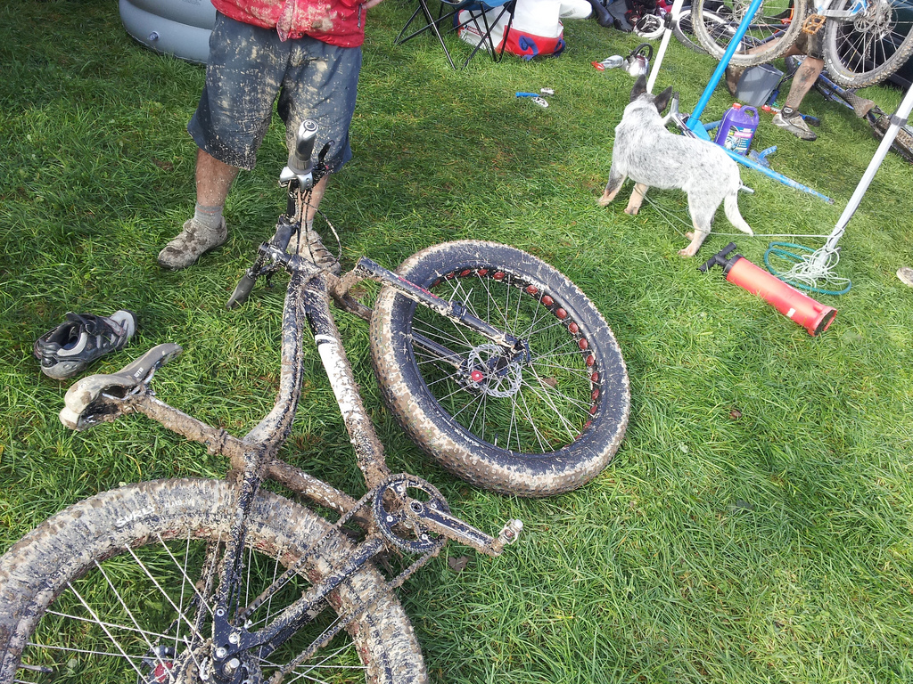 jeff 39 s bike blog when spray painting your dog. Black Bedroom Furniture Sets. Home Design Ideas
