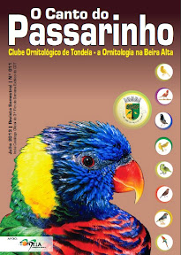 Revista o Canto do Passarinho