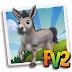 Fv 2 Amiatina Donkey (baby ,adult,prized)