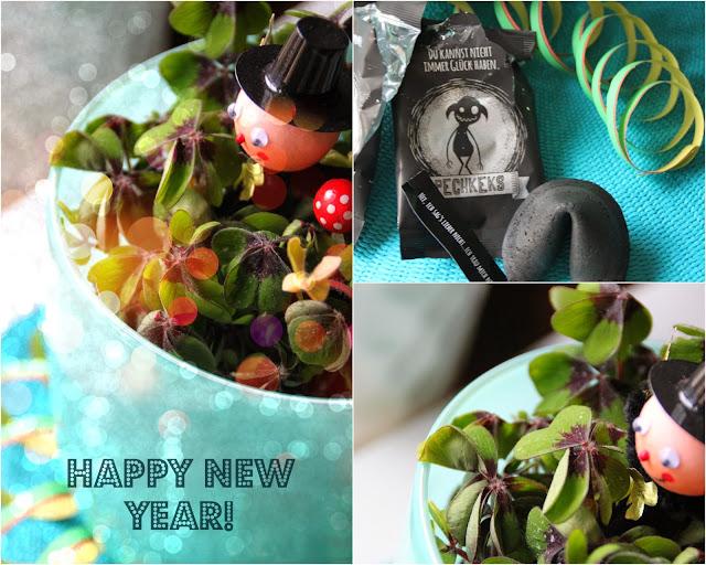 Ein frohes neues Jahr für alle meine Leserinnen und Leser!