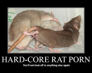 hardcore ratten porno - du wirst zu nichts anderem mehr onanieren