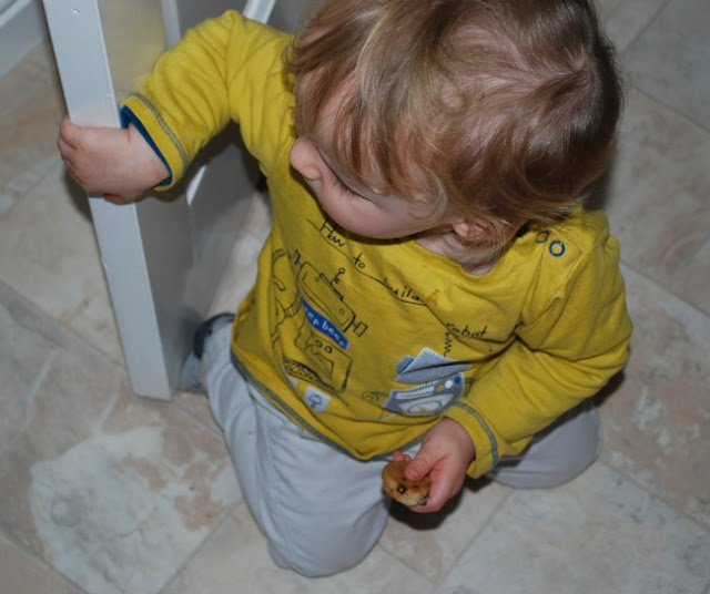 toddler with cookie in one hand whilst opening a door with the other