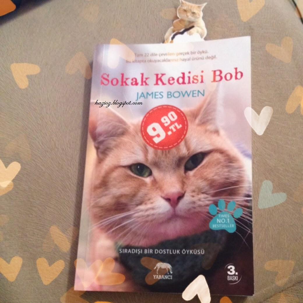 Sokak Kedisi Bob, ne okuyorum
