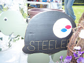 Steeler Turtle Planter