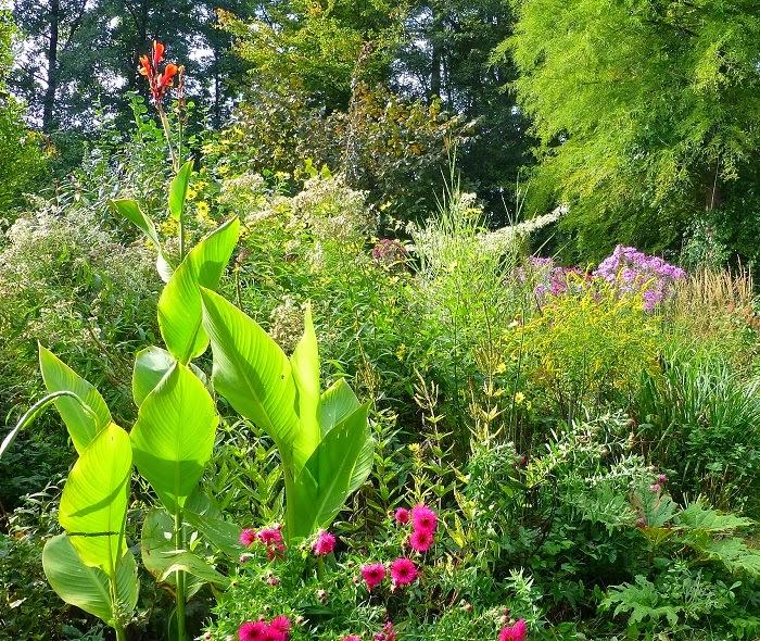 Le jardin de brigitte alsace petite ballade d 39 octobre - Petit jardin octobre brest ...