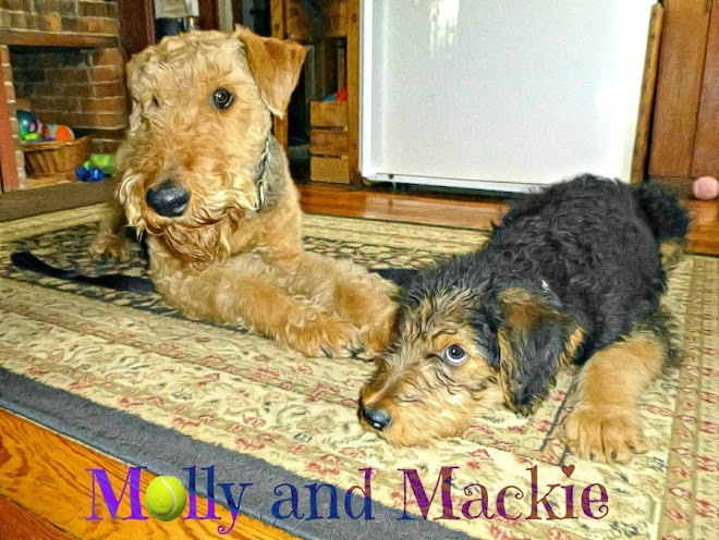 Molly and Mackie