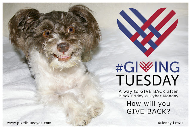 Giving Tuesday, a way to give back after Black Friday and Cyber Monday. Pixel asks, How will you give back?
