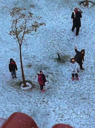Salju Di Mesir