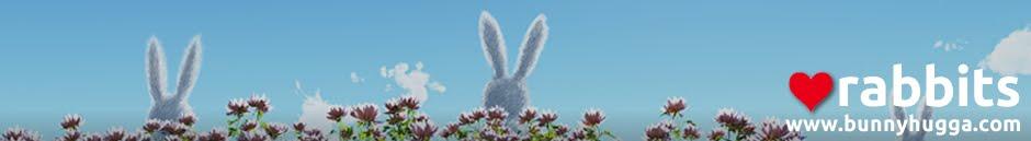 Bunnyhugga Blog