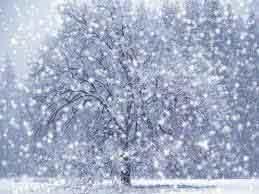 efek hujan salju