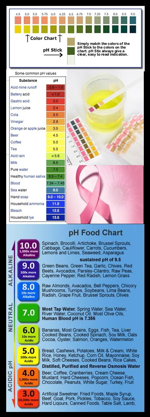 acido urico pie inflamado acido urico en el vino