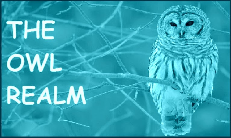 The Owl Realm