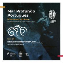 Homenagem ao Professor Mário Ruivo