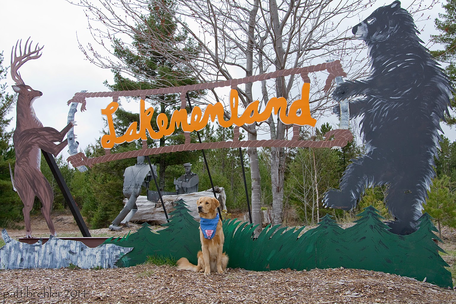 "A golden retriever sits in front of a large metal sign. On the left of the sign is an antlered deer standing on its hind legs, on the right side of the sign is a black bear standing up on its hind legs. The two animals are holding the outline of a brown metal sign that has the word ""Lakenenland"" in yellow inside of it Behind the sign are trees. The dog is sitting in what looks like mulch. He is wearing the blue Future Leader Dog bandana."