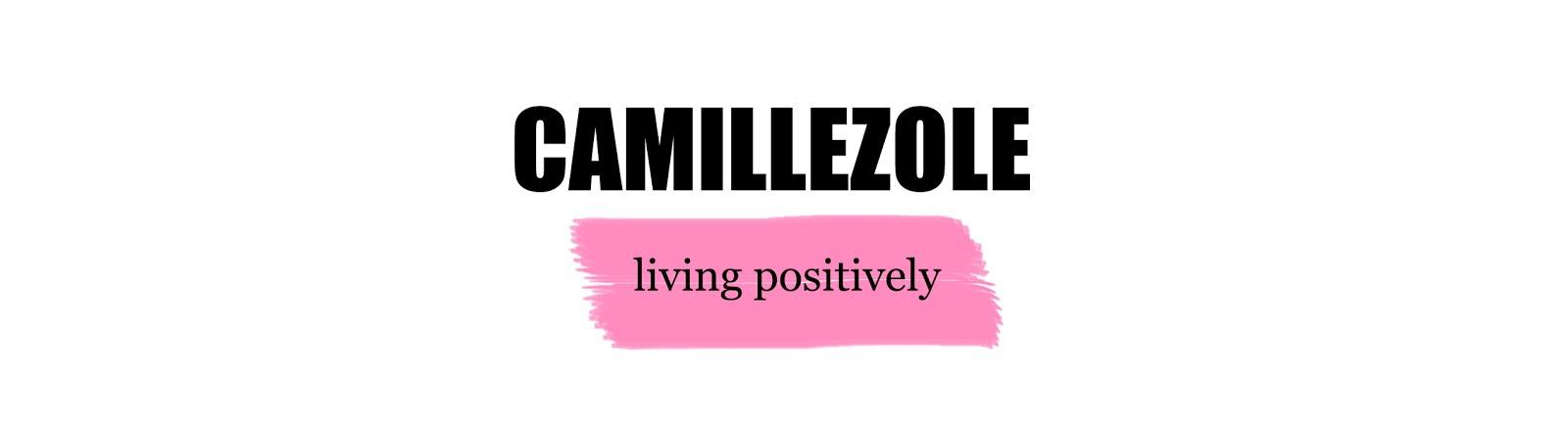 Le Camille Zole Blog