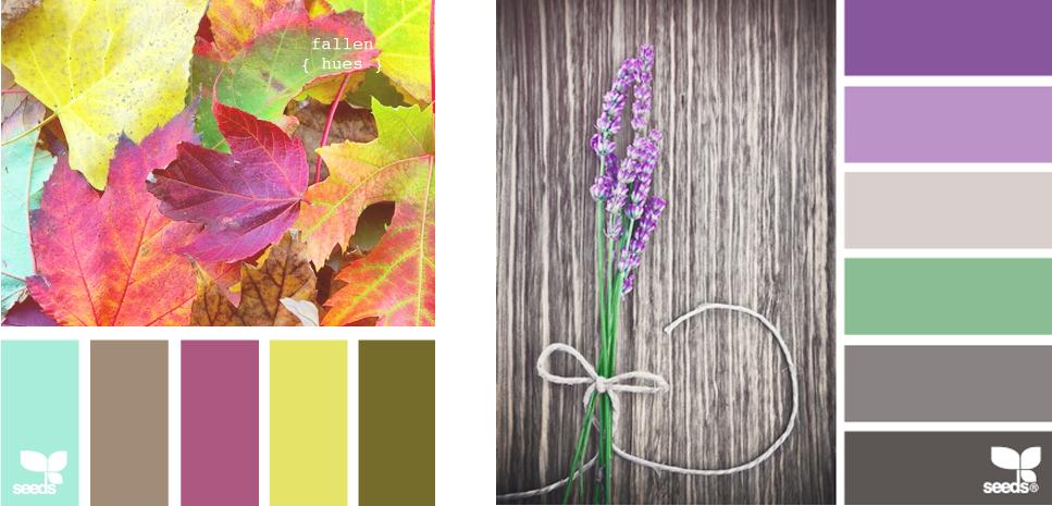 Pashion el morado para decorar tu hogar for Colores para el hogar