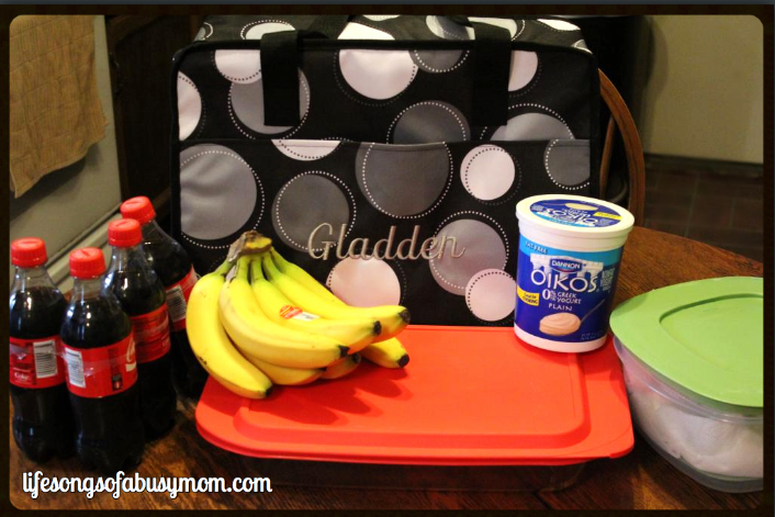 Thirty-one Market Thermal Tote Review & Giveaway!