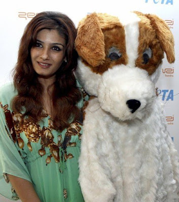 raveena tandon gorgeous actress pics