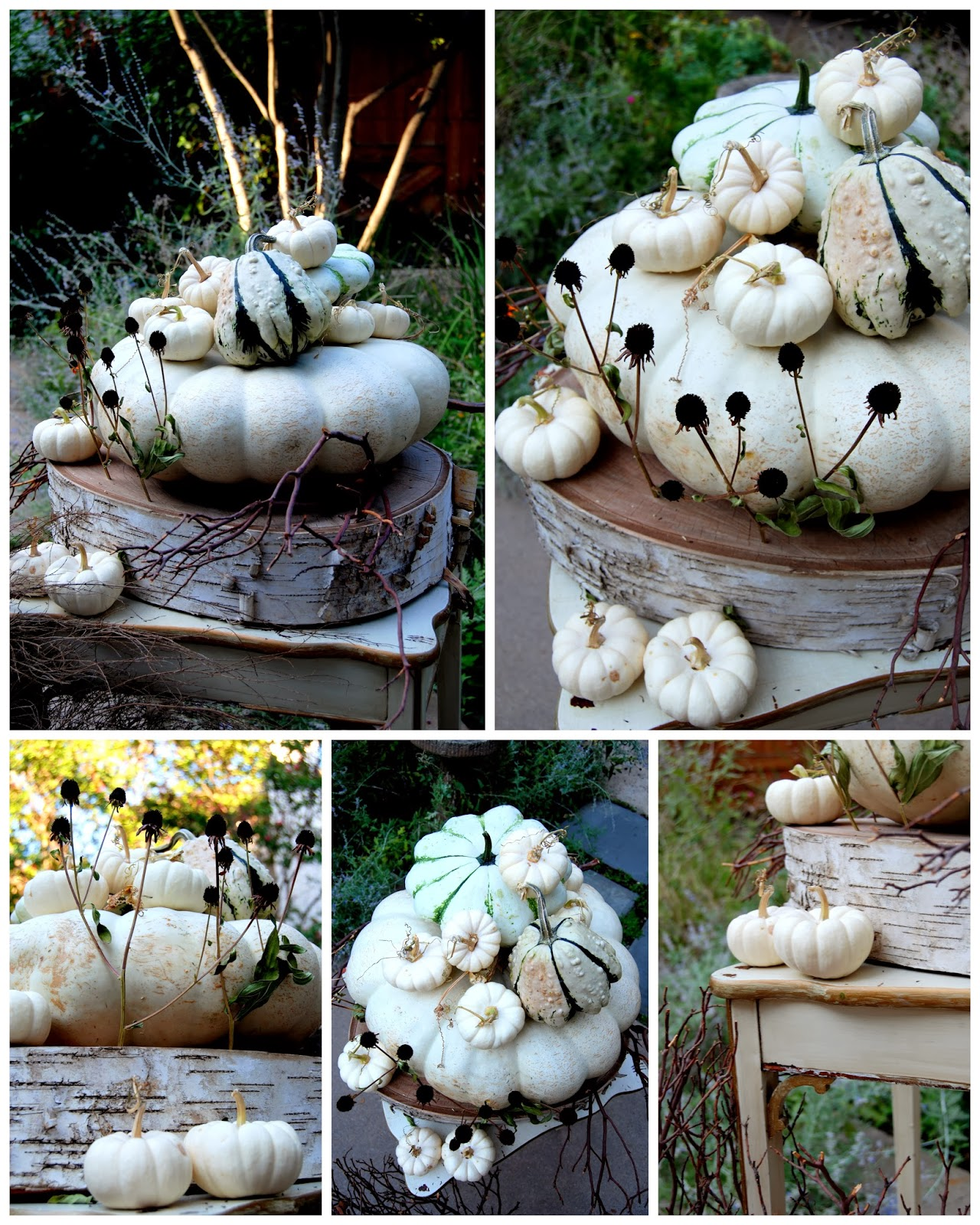Ghostly White Pumpkins