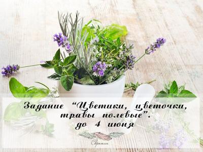 Задание Цветики, цветочки, травы полевые