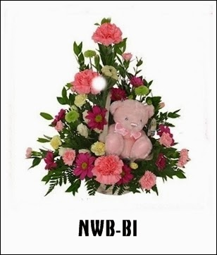 NWB-B1