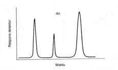 Kromatogram yang diperoleh dengan detektor diferensial