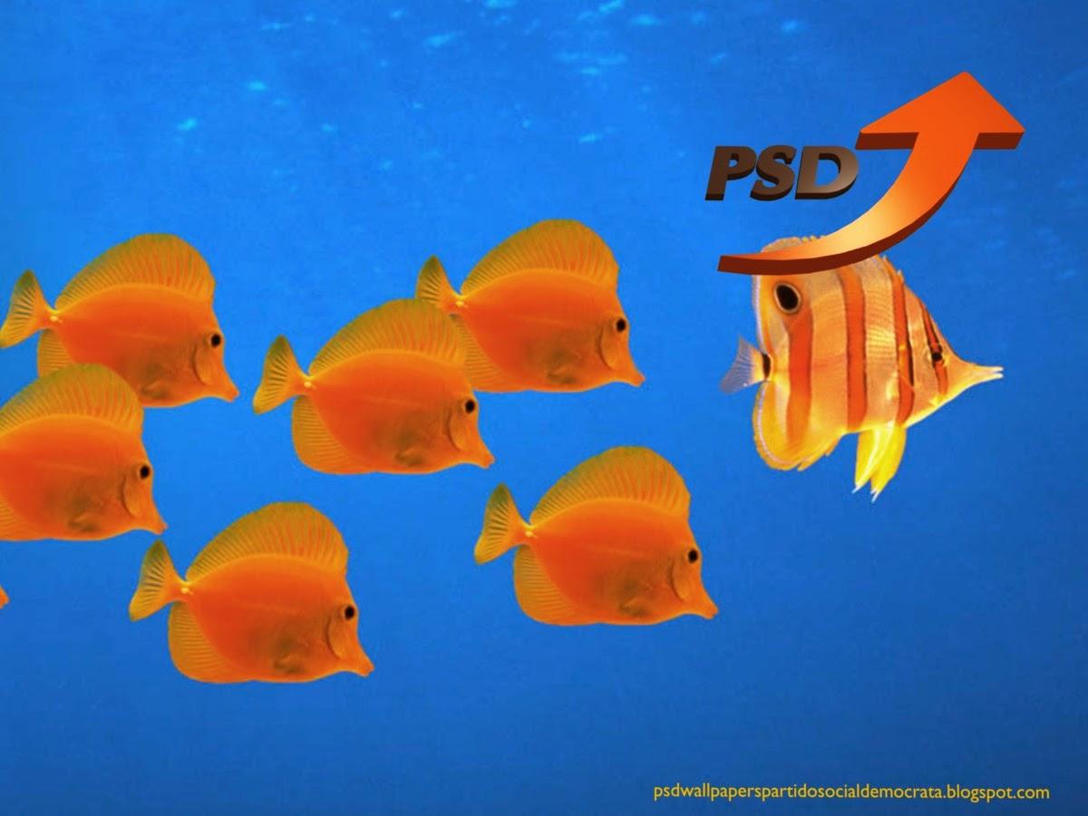 Logotipo do PSD emblema Seta inclinada do PSD em fundo de tela Aquário com Peixes para utilizar como fundo de tela wallpaper do seu ambiente de trabalho.