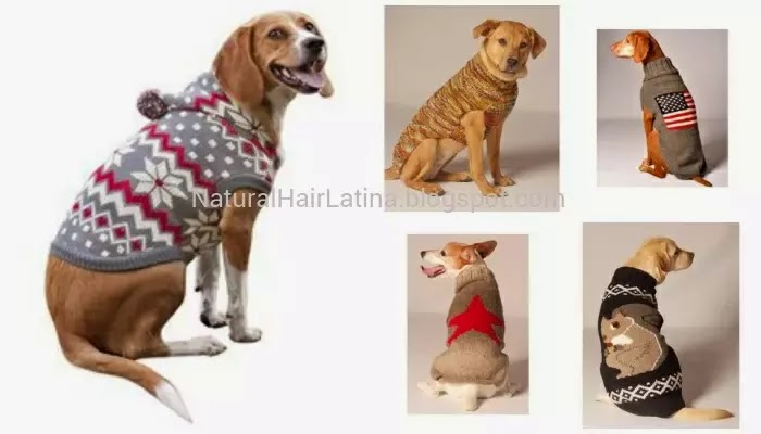 #doglife, dog fashion, dog clothes, dog garments, dog sweater, cute dog, canine clothes, canine fashion, canine sweater, #muttmonday, doggie fashion, doggie clothes, fall fashion fetching sweaters, dog sweaters under $30, canine sweaters under 30, affordable dog fashion, affordable dog sweaters, #dogs, #puppy, #dogclothes, #dogfashion, #barknobite, #mansbestfriend, #muttmonday, #instadogs, #animals, #pupdeck, doggie style, doggie bags, doggie b, doggie Kruger, hip doggie, doggiestyle,  #doggienation, doggie do, doggie district, doggie design doggie couture, social dog, affordable dog sweaters