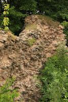Zřícenina hradu Frymburk/The Frymburk Castle Ruins