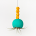 Colorful Hanging Air Plant Holder DIy