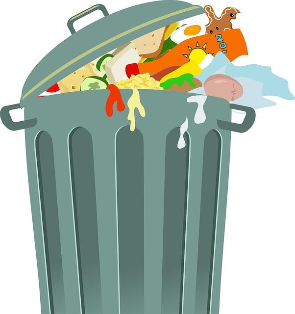 reportage sur le gaspillage alimentaire