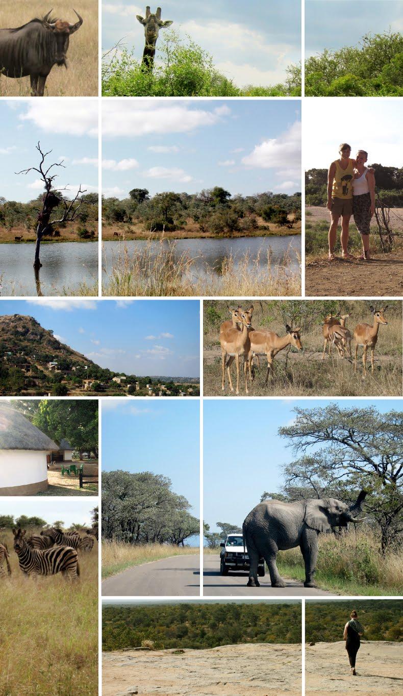 Kruger Park Trip
